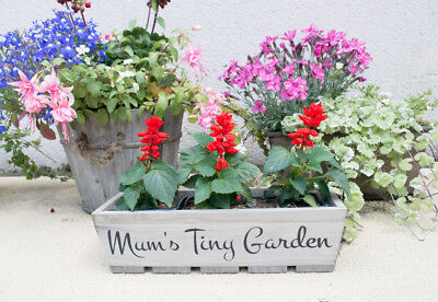 Personalised Wooden Garden Planters Flower Pot Outdoor Plants Square Rectangular