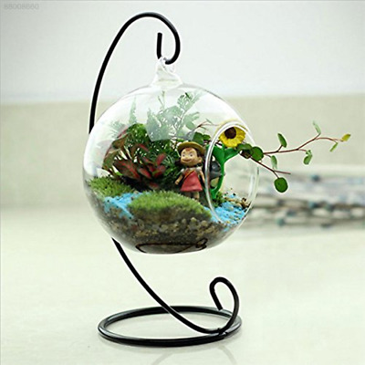 3ECF Glass Round with 1 Hole Flower Plant Hanging Vase Home Office Wedding Decor