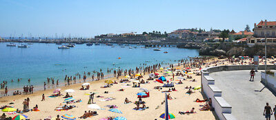 Buy In Portugal (Full Service: Property/house Visits/inspections)