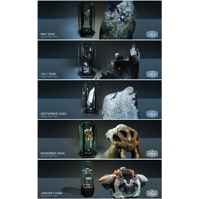 Star Citizen Limited Hangar Flair Items - PUGLISI COLLECTION All 5 Items - RARE!
