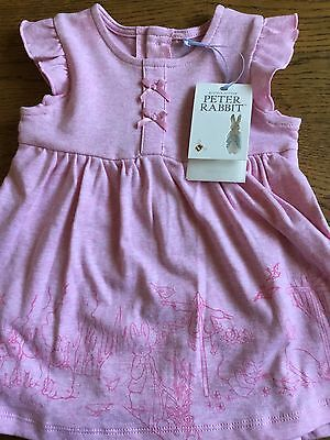 Mothercare Peter Rabbit ( Beatrix Potter ) Baby Girls Pink Dress Age 9-12  Months 68d3ae2f3525