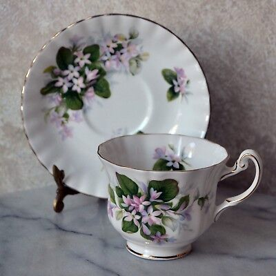 TEACUP and SAUCER SET - Royal Albert Adderley Mayflower , English bone china