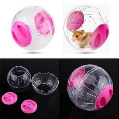 Small Animal Travel Fitness Exercise Play Toy Ball Large Hamster Gerbil BL3