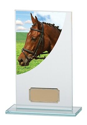 Horse/Equestrian Glass Trophies Horses Head Award 4 sizes FREE Engraving