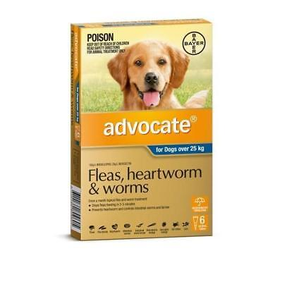 Advocate 6 Pack Extra Large Dogs over 25kg for fleas, heartworm and worms
