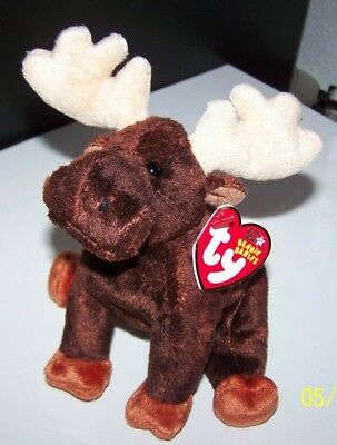 TY Beanie Babies ZEUS THE COUNTRY CABIN DECOR MOOSE STUFFED TOY MWMT