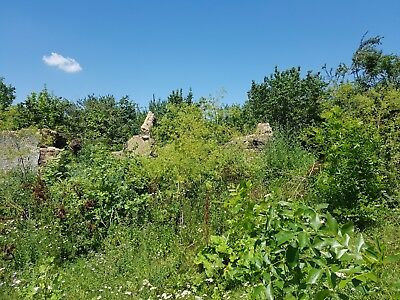 Land in Bulgaria Dobrich District