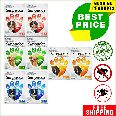 SIMPARICA for Dogs All Sizes Tick and Flea Control 12 Chews by Zoetis