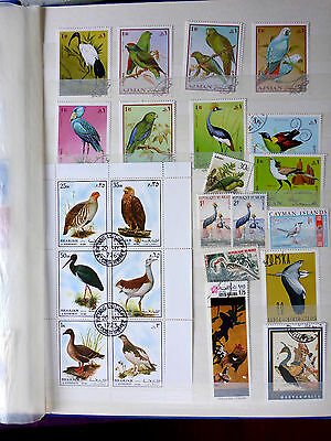 Worldwide Unsorted Topical Bird Stamp Collection All Different (D)(C)