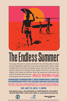 The Endless Summer LAMINATED ART POSTER 24x36in (61x91cm)