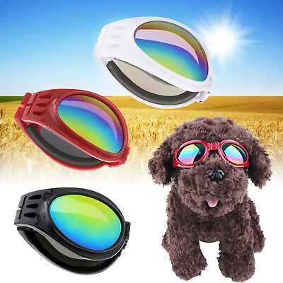 Pet Dog Doggy Sunglasses Toys Eye Wear Goggle Sun Glasses Adjustable Strap Party
