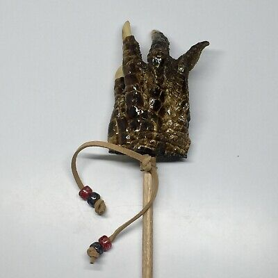 American Alligator Foot Claw Backscratcher Collectible Taxidermy Large #7