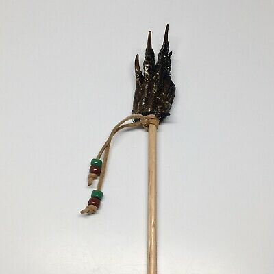 American Alligator Foot Claw Backscratcher Collectible Taxidermy Standard #6