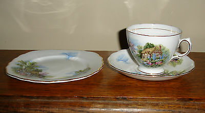 A Vintage Royal Vale  Bone China Trio With A Cottage And Garden Design