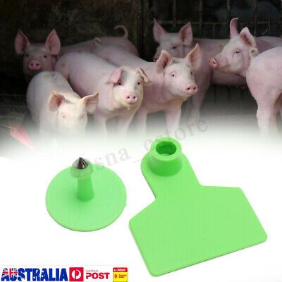 100x Empty Large Ear Tag Set Animal Goat Sheep Pig Cow Cattle Livestock Label