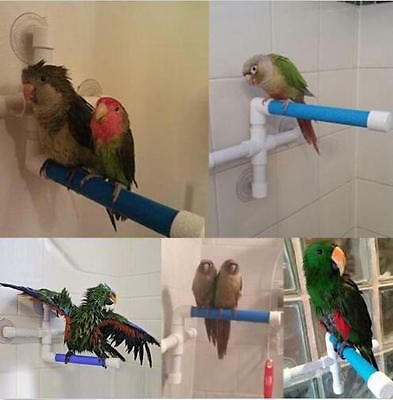 Bird Bath Perch Suction Cup Shower Perch Stand for Bird Parrot Macaw shan