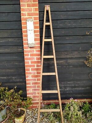 Vintage wooden apple, orchard, tree ladder - 6 rungs