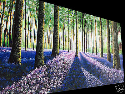 "Large 94"" wide forest flower trees art painting landscape Tasmania Australia"