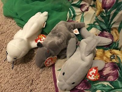 * Ty Beanie Baby Babies * Retired Rare LOT 3 * Seal * Dolphin * Armadillo !!*