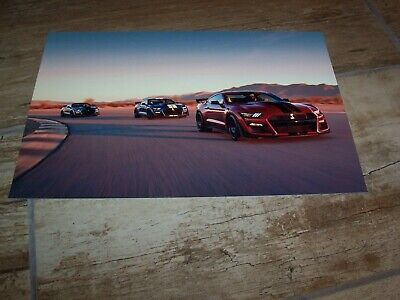 Photo de presse / Press Photograph FORD Mustang Shelby GT500 2019 / 2020 //