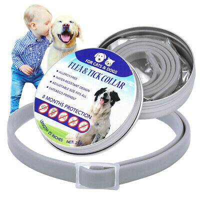 Adjustable Flea and Tick Collar for Pet Dog Cat 8 Months Protection Small Large