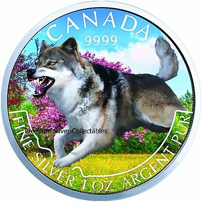 2018 Canada Predator Wolf Summer Colorized Series Coin - 1 Ounce Pure Silver!!