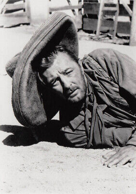 Photo Robert Mitchum 12x17cm
