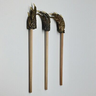 American Alligator Foot Pencil Backscratcher Set of 3 Collectible Taxidermy #1