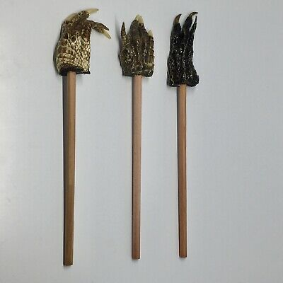 American Alligator Foot Pencil Backscratcher Set of 3 Collectible Taxidermy #2