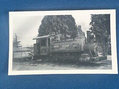 Oahu Sugar Co Hawaii Locomotive 5 Antique Photo