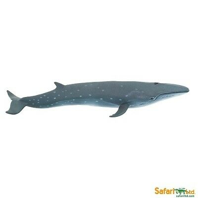 LEOPARD SHARK  detailed sealife underwater marine model Wild Safari toy 14cm