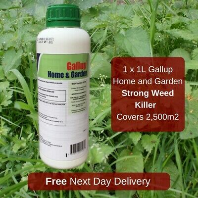 1L Gallup Home and Garden Annual Control of Perennial Grass and Weeds
