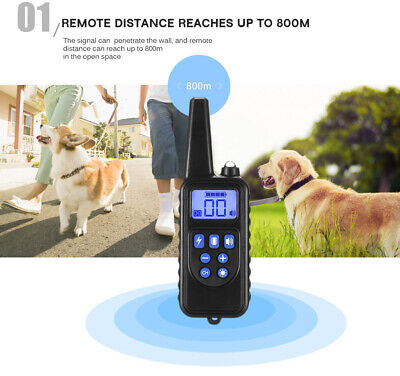 880 800m Rechargeable Dog Pet Training Collar Shock Remote Control LCD Displayed