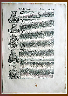 Inkunabel, Schedel Weltchronik, Pag. Lxxxv - Woodcut 1493, Graphics Graphic