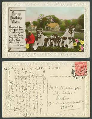 Dogs Puppies Flowers Loving Birthday Wishes Greetings 1931 Old Embossed Postcard