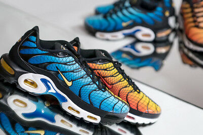 nike requin sunset