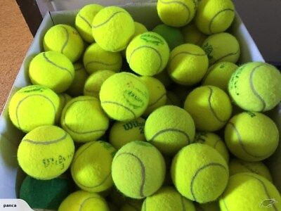 10 15 20 25 30 used TENNIS BALLS in good condition Wilson Penn-Practice,dog toys