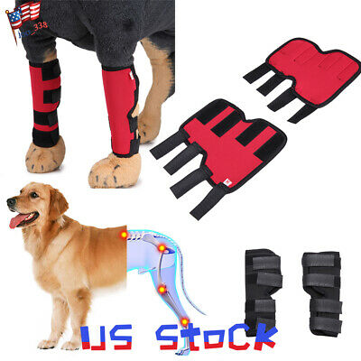 Pet Knee Pads Dog Support Brace for Hind Leg Hock Joint Wrap Legs Dog Protector