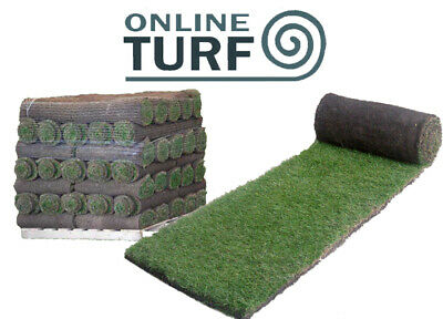 Lawn Turf - Seeded Multipurpose Garden Lawn Turf Rolls - UK delivery