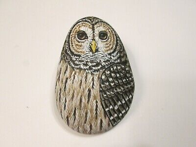 Barred Owl hand painted on a stone - pet rock - by Ann Kelly