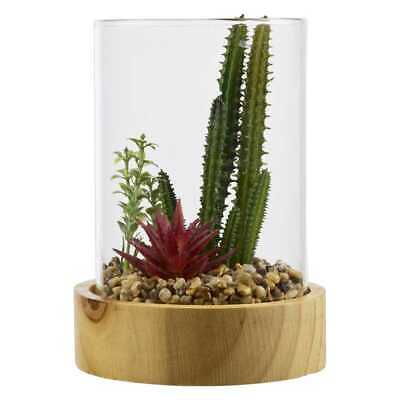 NEW Ombre Home Radiant Mineral Cactus Terrium By Spotlight