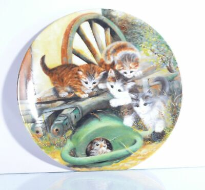 Collection Plate Seltmann Weiden Cat Hide and Seek - Certificate Original