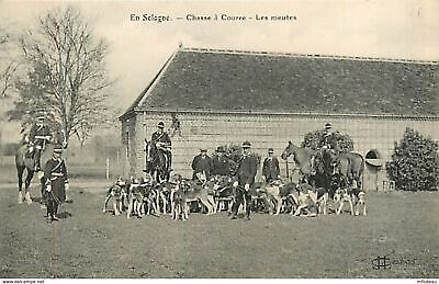 41* SOLOGNE chasse a courre -  meute               MA85-1022