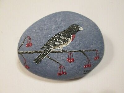 Rose Breasted Grosbeak hand painted on a rock by Ann Kelly