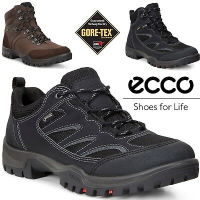 2937b72e0bc4 NIB ECCO XPEDITION III Mid GTX Oiled Nubuck Suede Coffee Boots US11 ...