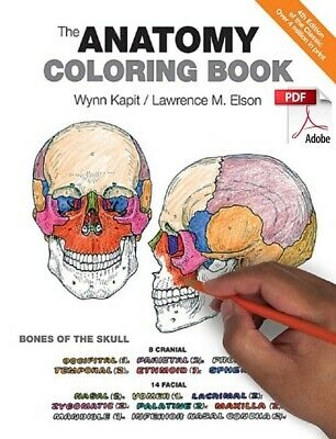The Anatomy Coloring Book **eBook Instant Delivery PDF/Digital File **