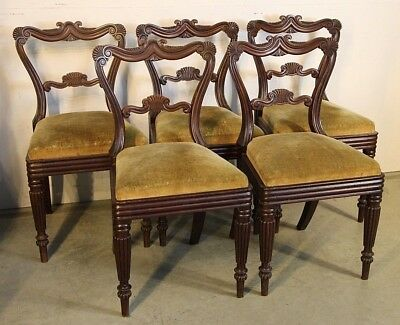 Set 5 antique carved English Regency mahogany dining chairs 1820 original patina