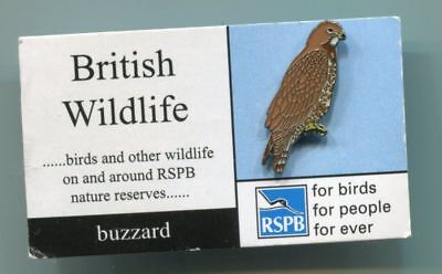 Early RSPB Charity Enamel Pin Badge BUZZARD Mint on card (U116)