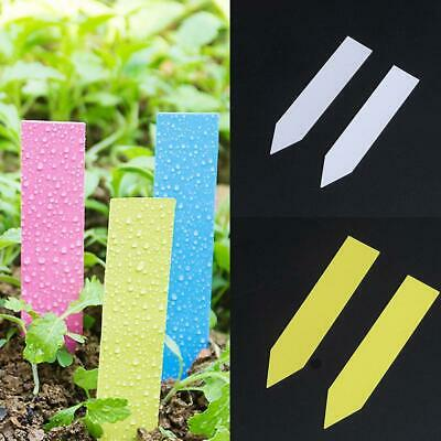100 x Garden Plant Pot Markers Plastic Stake Tags Yard Court Nursery Seed L E9U2