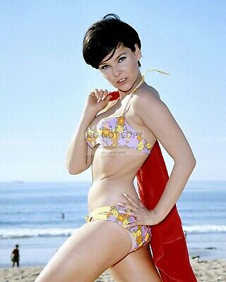 Actress Yvonne Craig Pin Up - 8X10 Publicity Photo (Fb-386)